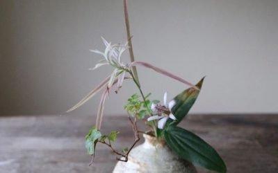 L'ikebana ou l'art japonais d'arranger les fleurs