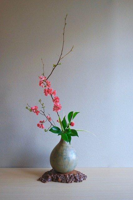 3 écoles, 3 visions de l'ikebana