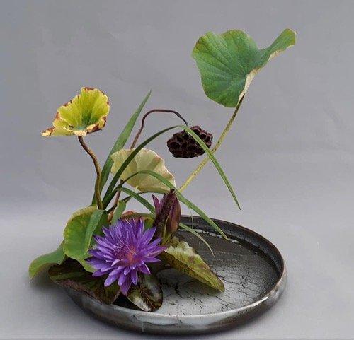 Moribana autour de la fleur de lotus, maître Ohara du Japon
